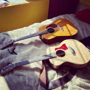 My acoustic guitars